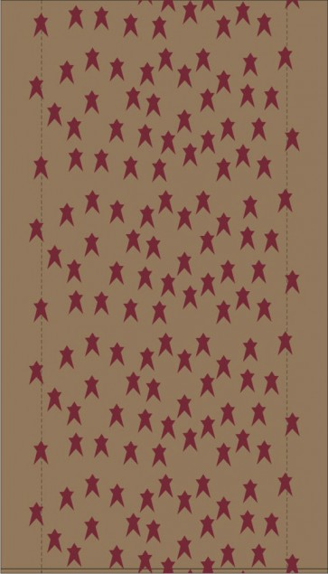 Scattered Star Print